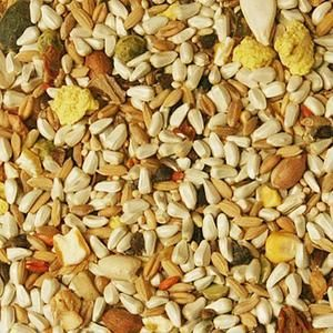 Parrot Seed Mixture