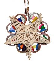 Brainy Bird Toys Star Lite