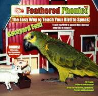 Feathered Phonics Volume 3- Barnyard Fun
