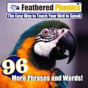Feathered Phonics Volume 4, More Phrases And Words.