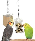 Paradise Toys Foraging Box Feeder