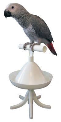 PT The Percher Portable Bird Stand